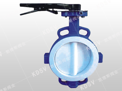 High corrosion resistant butterfly valve
